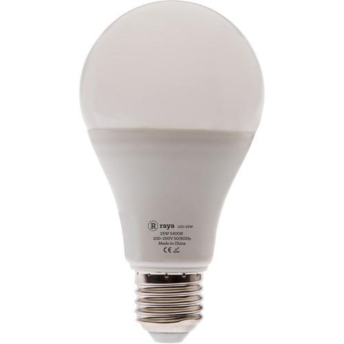 Raya 25W LED Daylight Bulb