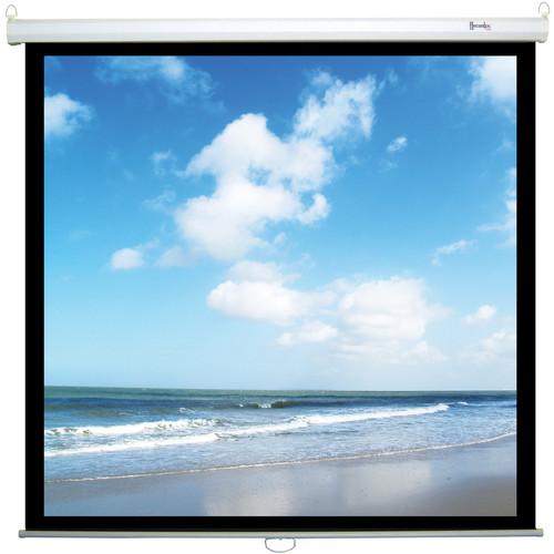 "Recordex USA ReTract Plus Premium Manual Wall/Ceiling Projector Screen (96 x 96"")"