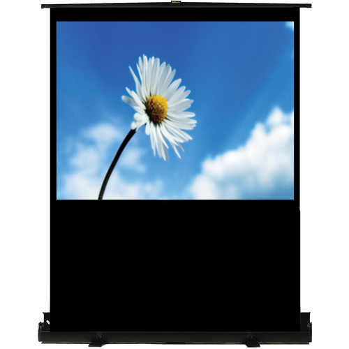 "Recordex USA TheaterNow! Portable Pull-Up Screen with PerfectLift Pneumatic Frame (36 x 48"")"