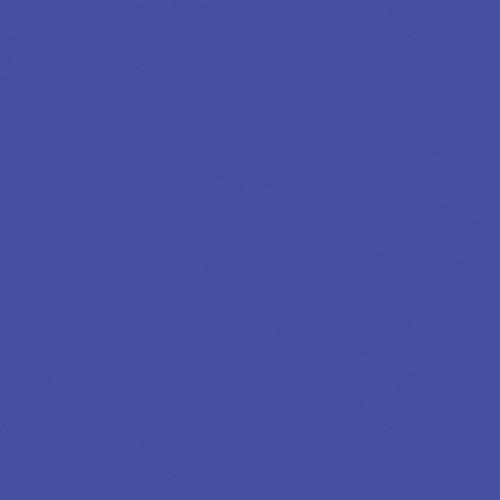"Rosco E-Colour #199 Regal Blue (48"" x 25' Roll)"
