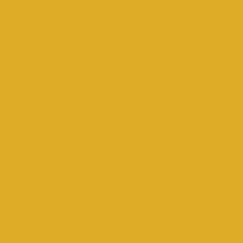 """Rosco E-Colour+ #642 Half Mustard Yellow (21 x 24"""") Sheet"""
