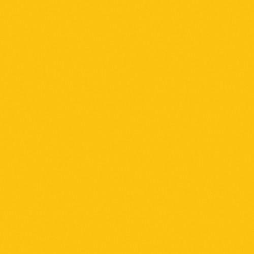 """Rosco E-Colour+ #643 1/4 Mustard Yellow (21 x 24"""") Sheet"""