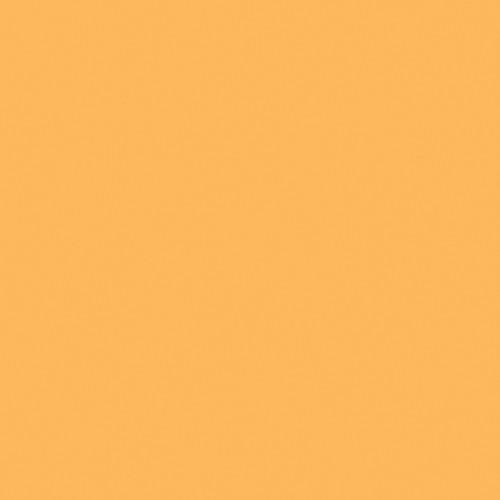 "Rosco E-Colour+ #651 HI Sodium (21 x 24"") Sheet"