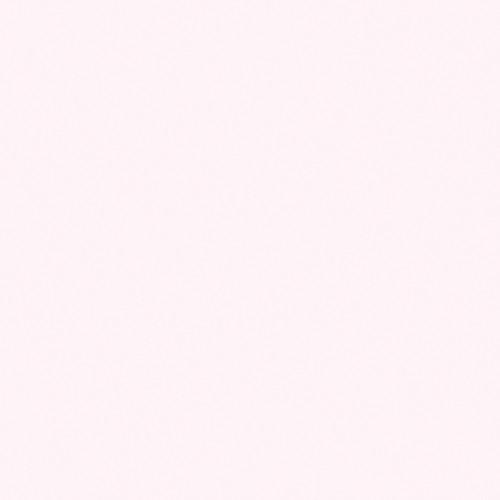 "Rosco OPTI-FLECS Barely Minus Green Filter (12 x 12"")"