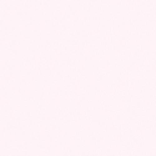 "Rosco OPTI-FLECS Barely Minus Green Filter (24 x 24"")"
