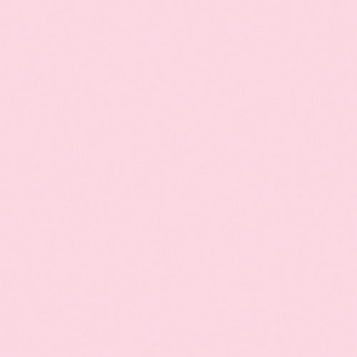 "Rosco OPTI-FLECS 1/4 Minus Green Filter (24 x 24"")"