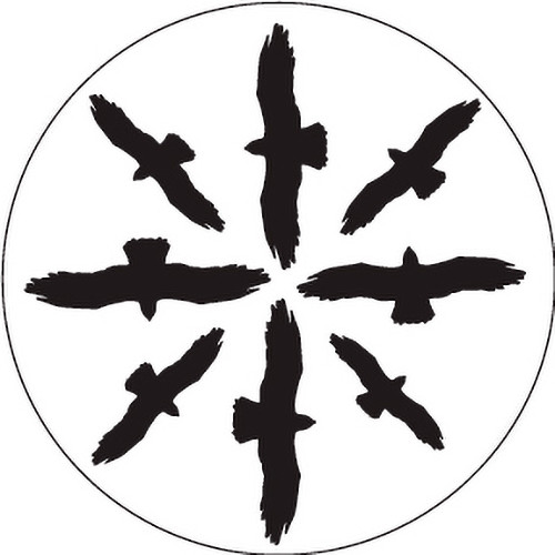 Rosco Circling Birds Silhouette 1 B/W Rotating Glass Gobo (Custom Size)