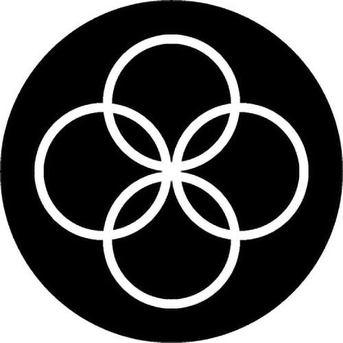 Rosco Circles 2 B/W Rotating Glass Gobo (B Size)