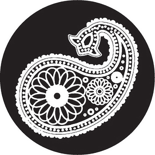 Rosco Paisley 13 B/W Breakup Glass Gobo (B Size)