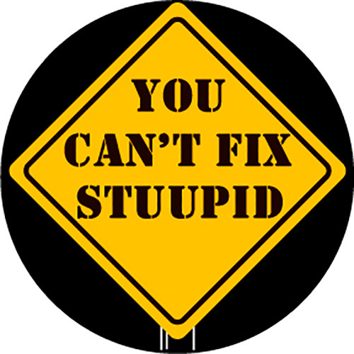 Rosco You Can't Fix Stupid 2-Color Glass Gobo (Custom Size)