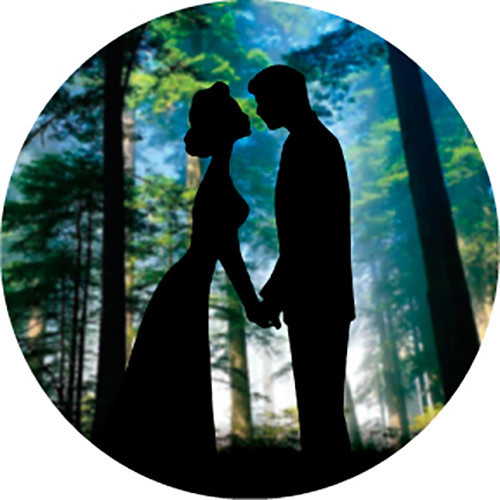 Rosco Kiss Silhouette in Color Wedding Glass Gobo (B Size)