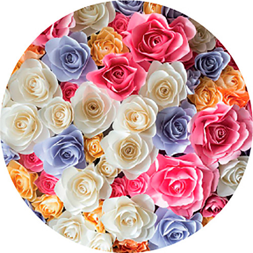 Rosco Bright Colors Rose Bouquet Wedding Glass Gobo (B Size)