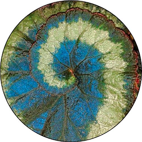 Rosco Spiral Leaf Color Breakup Glass Gobo (Custom Size)