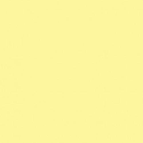 "Savage Widetone Seamless Background Paper (#93 Lemonade, 26"" x 36')"