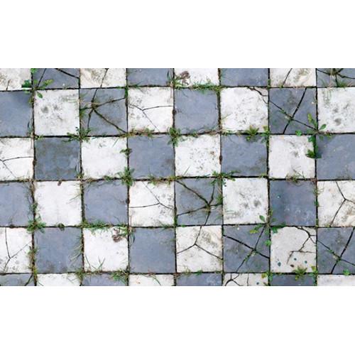 Savage Floor Drop 4x5' (Aged Pavers)