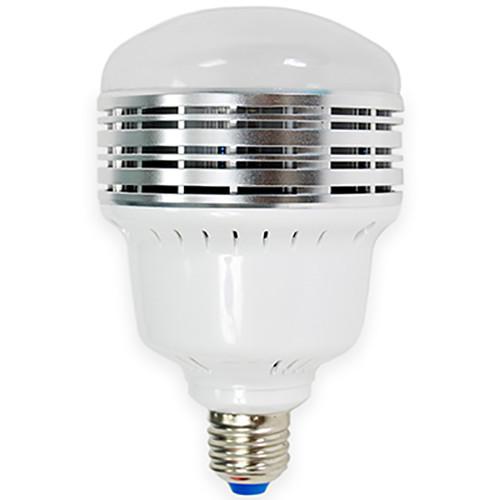 Savage LED Studio Lamp (30W, 120V)
