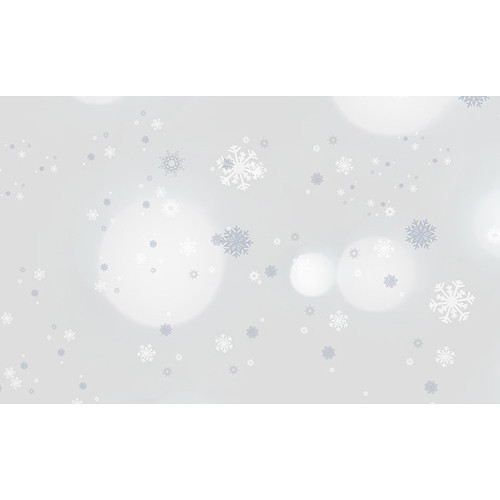 """Savage Printed Background Paper (53"""" x 18', Winter Frost)"""
