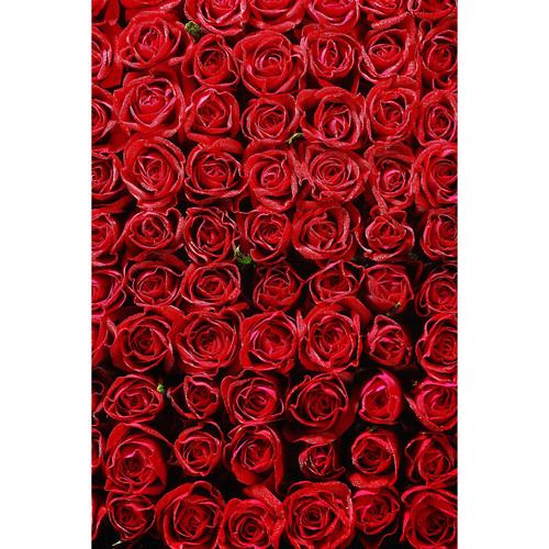 Savage Romantic Roses Printed Vinyl Backdrop (5x7')