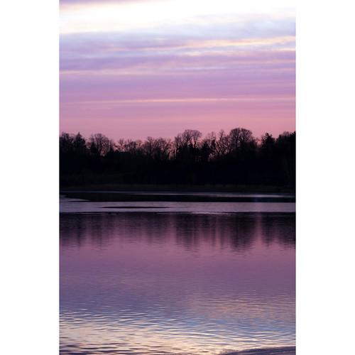 Savage Lavender Lake View Printed Vinyl Backdrop (5x7')