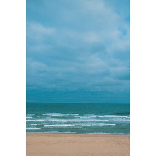 Savage Surf Beach Printed Vinyl Backdrop (5x7')