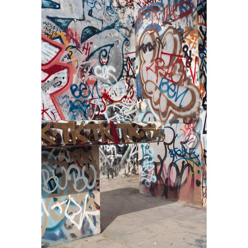 Savage Graffiti Covered Alley Printed Vinyl Backdrop (5x7')