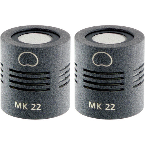 Schoeps MK 22 Microphone Capsule (Matched Pair, Matte Gray)