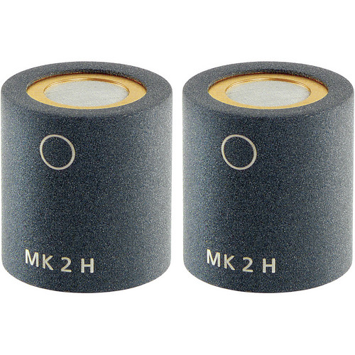 Schoeps MK 2H Microphone Capsule (Matched Pair, Matte Gray)