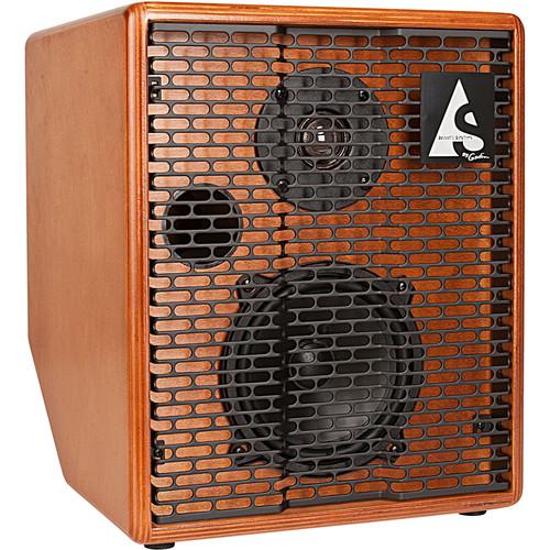 Seagull Guitars ASG 75-Watt Wood 2 Channel Amplifier