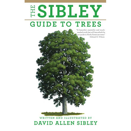 Sibley Guides Book: Guide to Trees