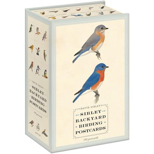 Sibley Guides Backyard Birding Postcards