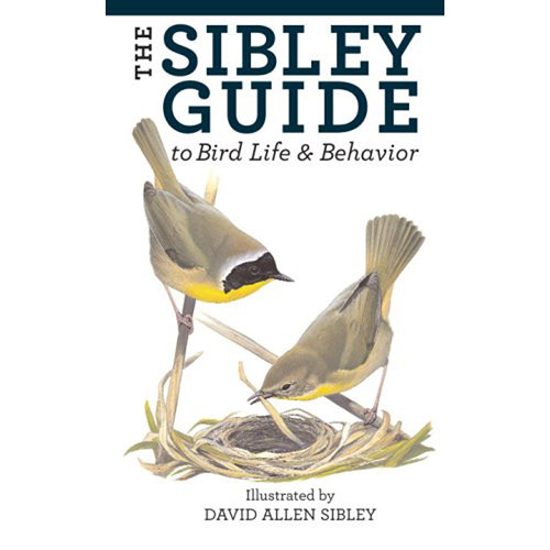 Sibley Guides Book: Guide to Bird Life & Behavior