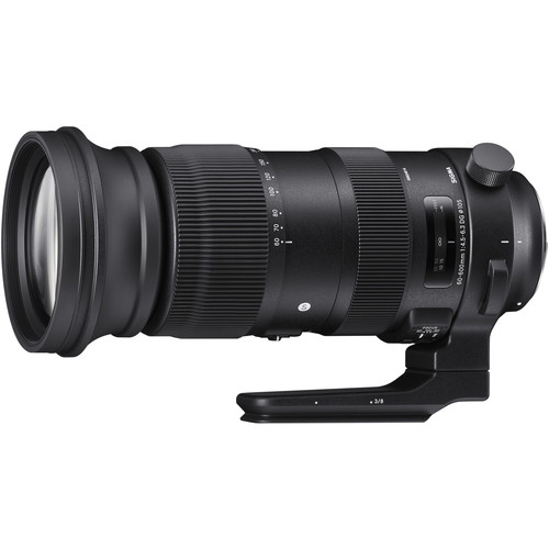 60 600mm F/4.5 6.3 Dg Os Hsm Sports Lens For Canon Ef by Sigma