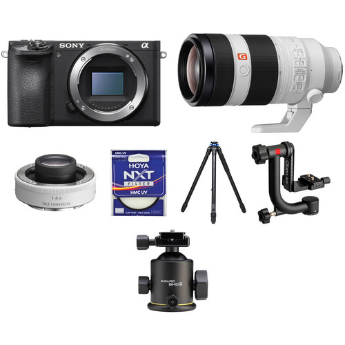 Sony Alpha a6500 with 100-400mm Lens and 1.4x Teleconverter Wildlife Kit