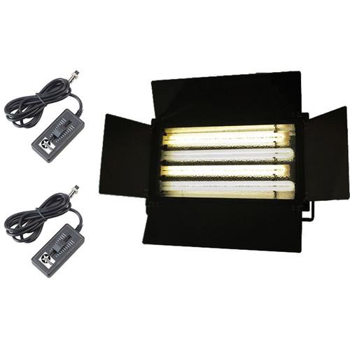 Stellar Lighting Systems DFL-C220-D2 Vari-Flo 4 Lamp Dual Color Fluorescent Light