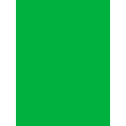 Studio Dynamics Poly Muslin Background (10 x 10', Chroma Key Green)