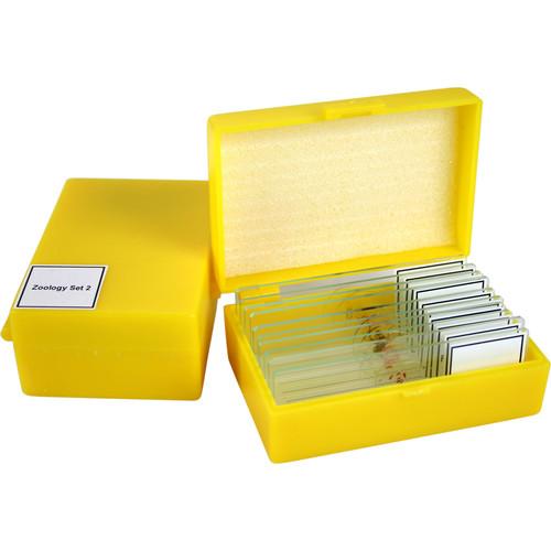 Swift MA804 Zoology 2 Slide Kit (Reptiles & Amphibians)