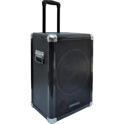 Technical Pro 12'' Portable Subwoofer