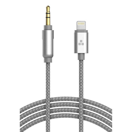 Thore 3.5mm Audio to Lightning Connector Aux Cable (4', Gray)