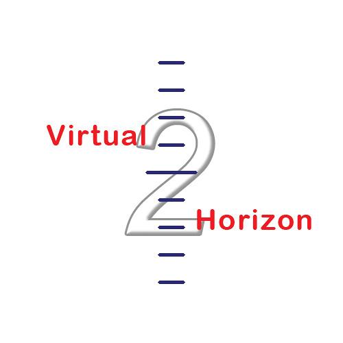 "Transvideo VirtualHorizon2 Leveler for CineMonitorHD Evolution3 & 7"" RainbowHD SBL Monitors (Software Option)"