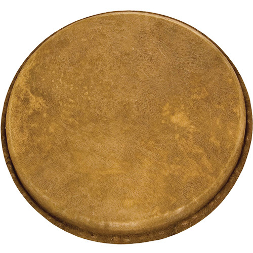 """Tycoon Percussion Goatskin Head for Dancing Drum Djembe (11"""")"""