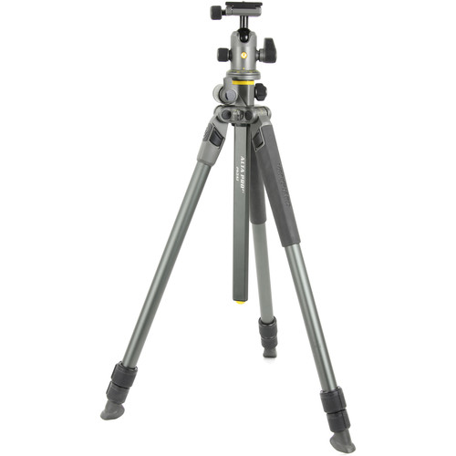 Vanguard Alta Pro 2+ 263AB100 Aluminum-Alloy Tripod Kit with Alta BH-100 Ball Head