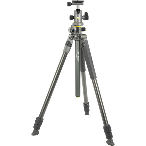 Vanguard Alta Pro 2+ Carbon Fiber Tripod with BH-100 Ball Head