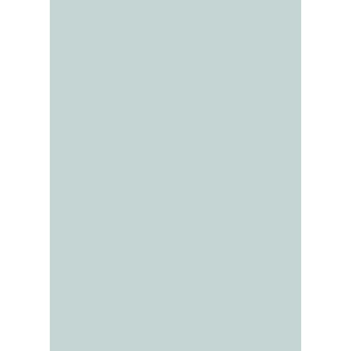Westcott Solid Color Art Canvas Backdrop with Grommets (5 x 7', Light Turquoise)