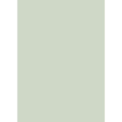 Westcott Solid Color Art Canvas Backdrop with Grommets (5 x 7', Light Green)