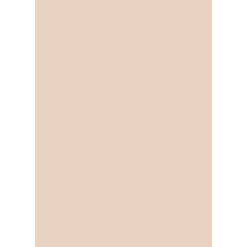 Westcott Solid Color Art Canvas Backdrop with Grommets (5 x 7', Light Orange)