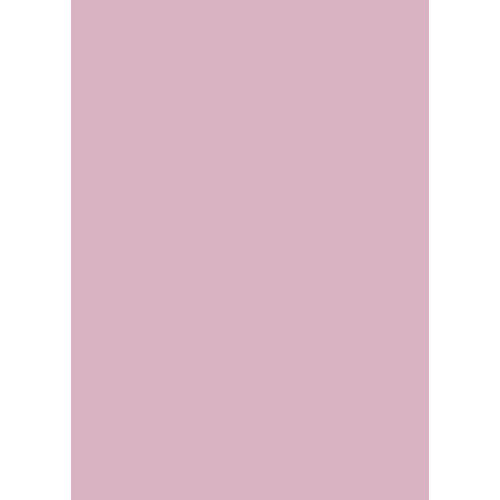 Westcott Solid Color Matte Vinyl Backdrop with Grommets (5 x 7', Light Pink)