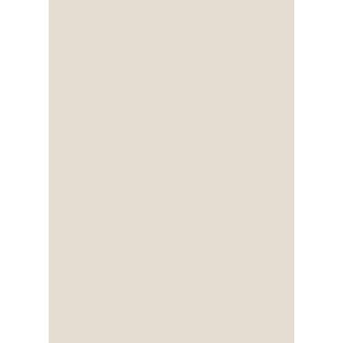 Westcott Solid Color Matte Vinyl Backdrop with Grommets (5 x 7', Light Tan)