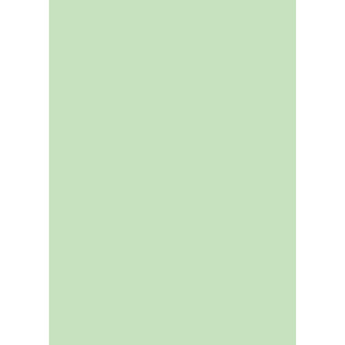 Westcott Solid Color Art Canvas Backdrop with Grommets (5 x 7', Green)