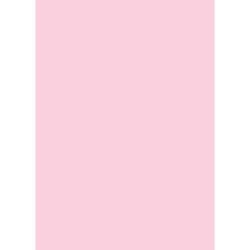 Westcott Solid Color Art Canvas Backdrop with Grommets (5 x 7', Pink)
