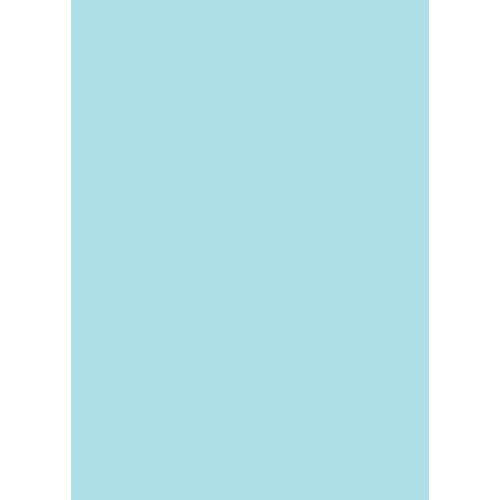 Westcott Solid Color Matte Vinyl Backdrop with Grommets (5 x 7', Blue)